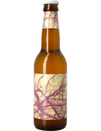 To Øl Sur Tangerine / Mosaic Lemonade